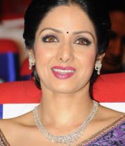sridevi-saree-stils-at-tsr-awards-2013-21