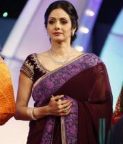 sridevi-saree-stils-at-tsr-awards-2013-3