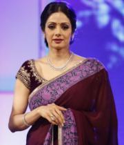 sridevi-saree-stils-at-tsr-awards-2013-4