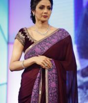 sridevi-saree-stils-at-tsr-awards-2013-5