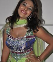 srilekha-latest-hot-photos-153