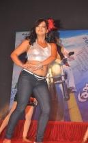 srimannarayana-audio-launch-photos-02