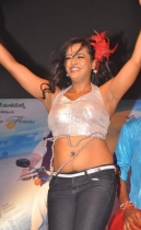 srimannarayana-audio-launch-photos-06