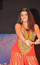 srimannarayana-audio-launch-photos-09