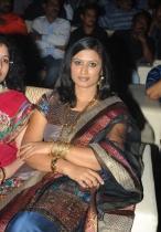 srimannarayana-audio-launch-photos-19