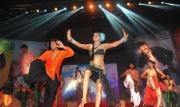 srimannarayana-audio-launch-photos-27