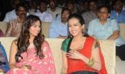 srimannarayana-audio-launch-photos-55