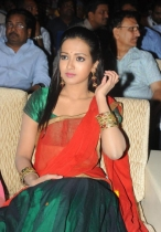 srimannarayana-audio-launch-photos-64