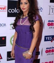 stars-at-gr8-women-awards-2013-13
