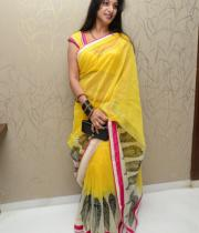 surekha-vani-saree-stills-at-yevadu-press-meet-12