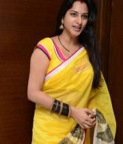 surekha-vani-saree-stills-at-yevadu-press-meet-18