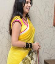 surekha-vani-saree-stills-at-yevadu-press-meet-2