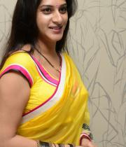 surekha-vani-saree-stills-at-yevadu-press-meet-3