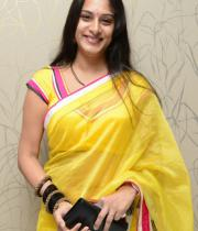 surekha-vani-saree-stills-at-yevadu-press-meet-5