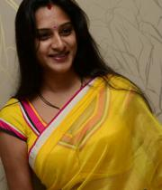 surekha-vani-saree-stills-at-yevadu-press-meet-6