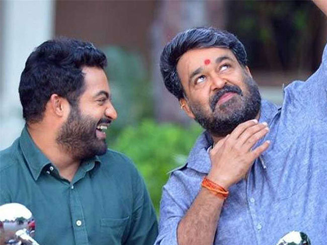 Director Eyeing NTR Mohan Lal Combo